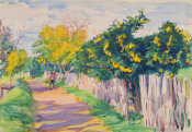 Dodge MacKnight - A Lane Through an Orange Grove, Orihuela, 1904