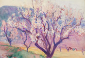 Dodge MacKnight - Almond Trees, Valserres, 1894-1895