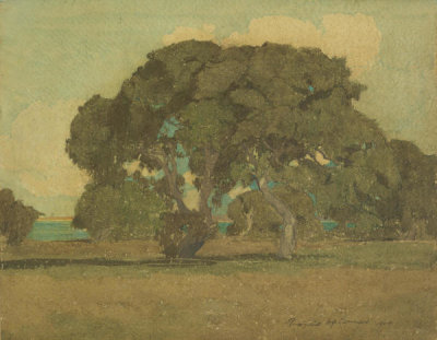 Francis McComas - Oaks of Monterey, California, 1904